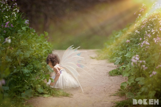 ScottWedding_028-fairy-web